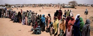 IDP-camp-300x116