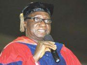 Professor Dibu Ojerinde
