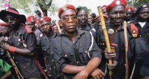 nigeria vigilante group