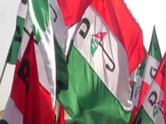 PDP Logo Flags