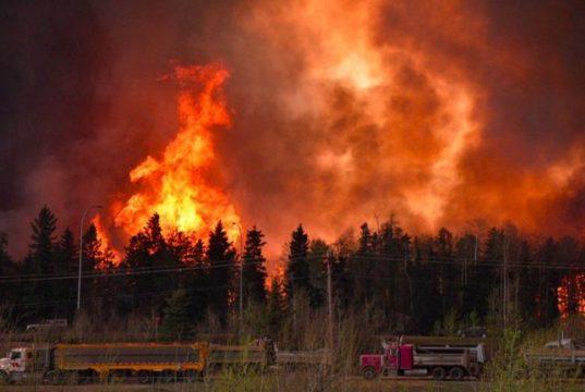 alberta wildfire in canada