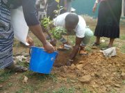 NYSC Member Godshield Kanjal flagged off over  economic tree planting exercise