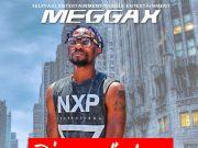 Meggax Oluwashola Oyedokun