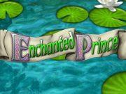 Enchanted Prince Slot