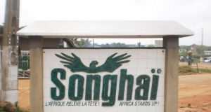 Songhai Agricultural Initiative