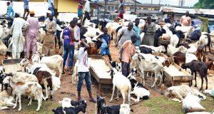 Ram Market in Nigeria