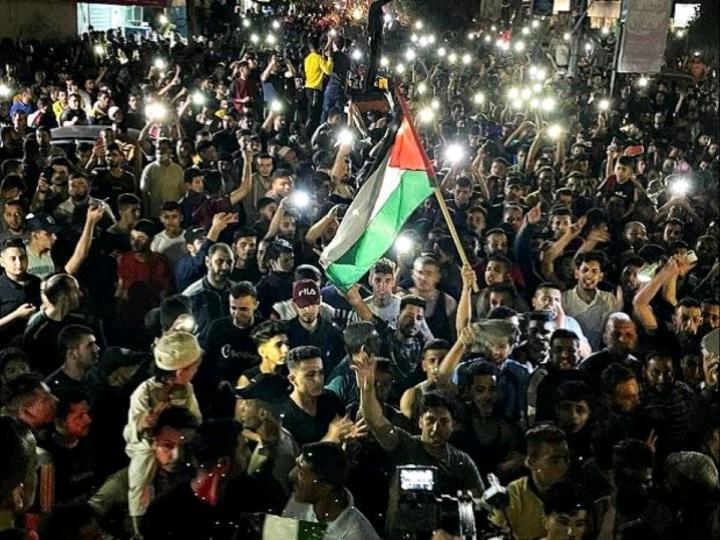 Palestine Protest Against Israeli